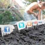 social-media-garden