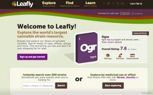 leafly_screenshot