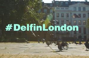 delfin_london