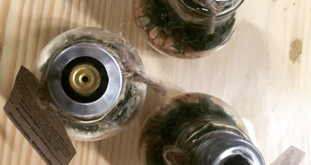 terra-bulb,