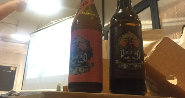 pinatubo-craft-beer, the-bazket