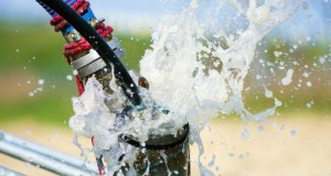 Useful Things That You Need to Know About Drinking Water Hose