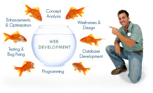 Things To Know Before Choosing A Web Design Company