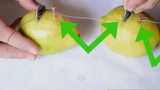 lemon-batt