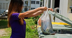 What Makes Rubbish Removal Services a Practical Alternative?