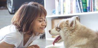 pets-skin-care