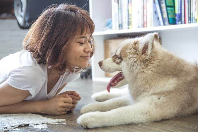 Do You Need Air Purifiers in Homes With Pets? How to Buy the Best Pet Insurance Policy pets-skin-care