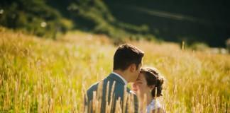 Beautiful Wedding - Negosentro