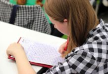 Pre-Employment Tests students Child's Intelligence