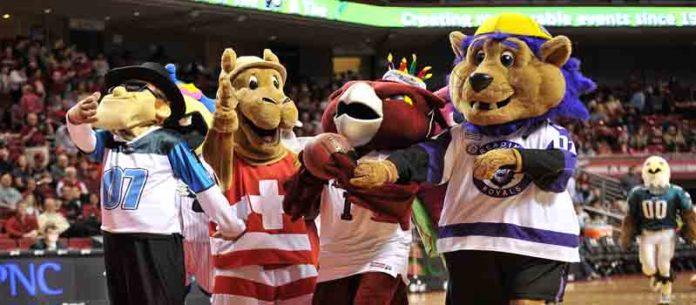 mascots costumes