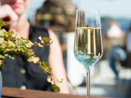 Spain White Wines
