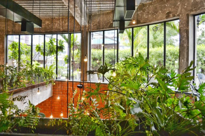 balcony garden - Negosentro