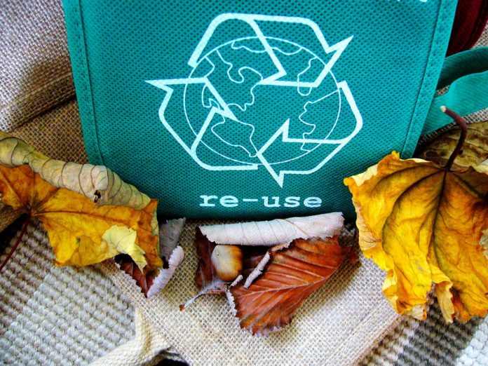 xv The biggest challenges in small business recycling_1