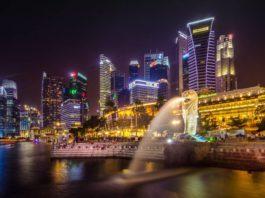 Singapore SEO-Negosentro
