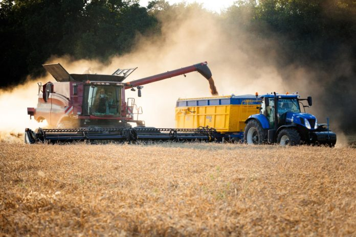 5 Efficient Ideas to Consider in Starting Up Agribusiness