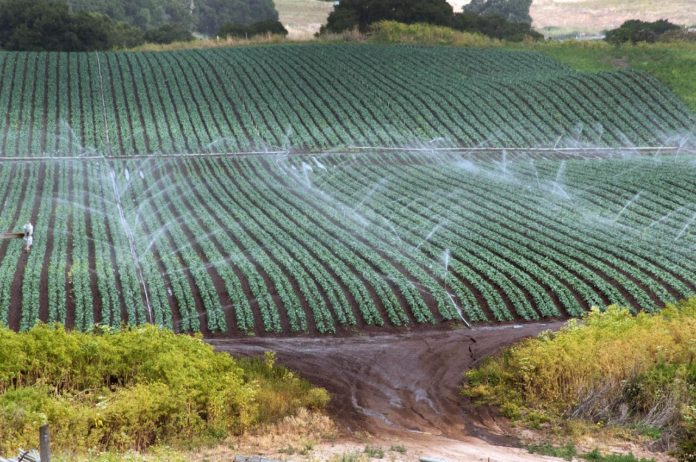 How To Decide Which Type of Agricultural Water To Use