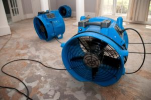 5 Tips for Choosing the Best Water Damage Repair Contractor