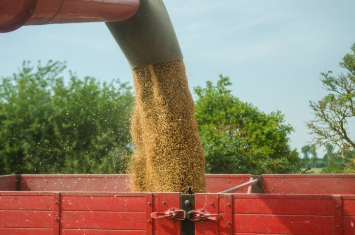 Comparing Traditional to Agribusiness Accounting