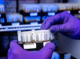 Good Quality Custom Antibody Services
