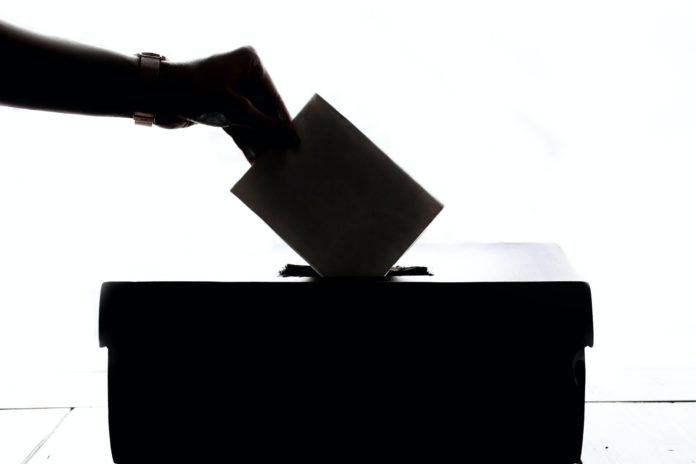 election digital strategist nievera